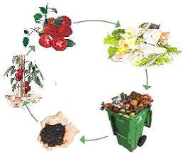 kompost_04
